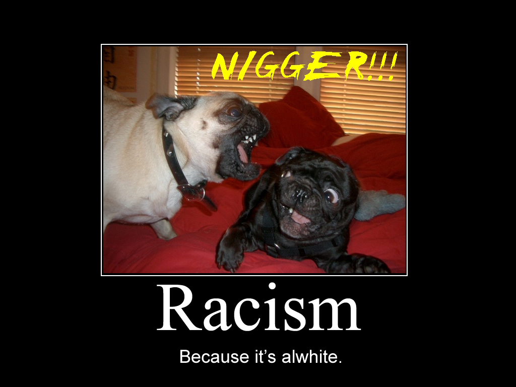 photo marrante raciste